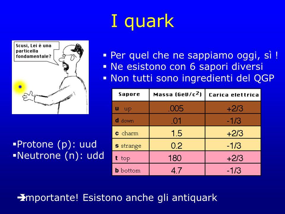 I quark Per quel che ne sappiamo oggi, sì !