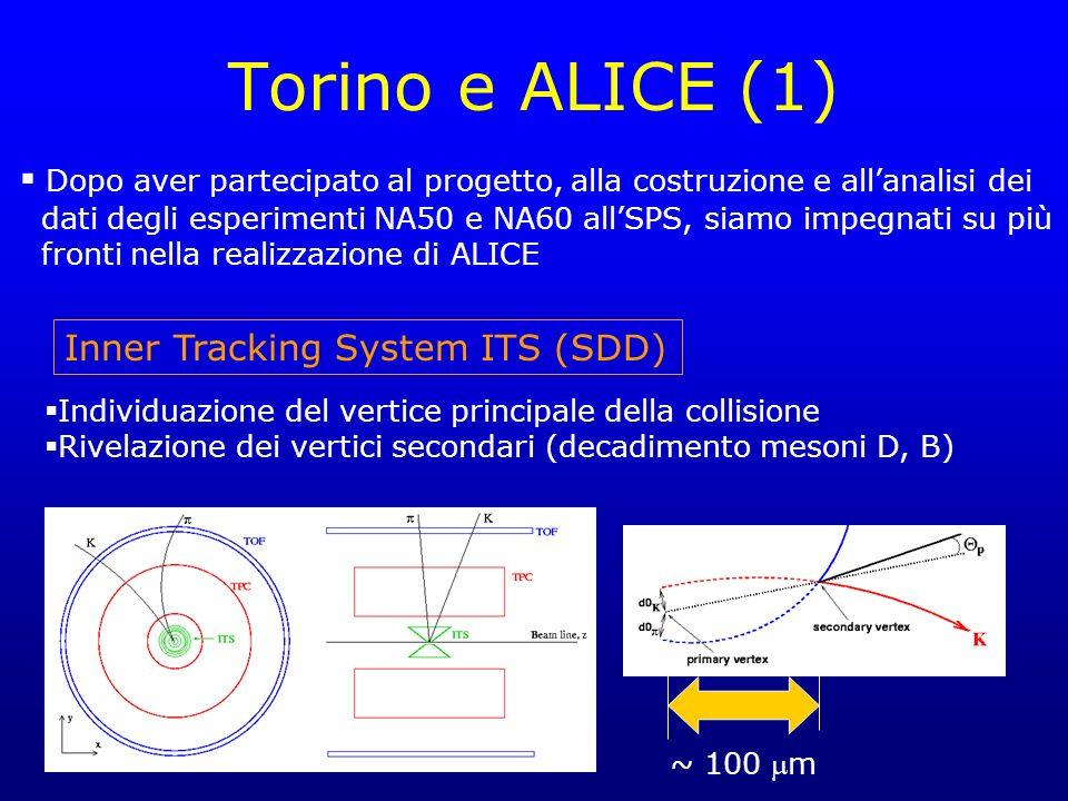 Torino e ALICE (1) Dopo aver partecipato al progetto, alla costruzione e all'analisi dei.