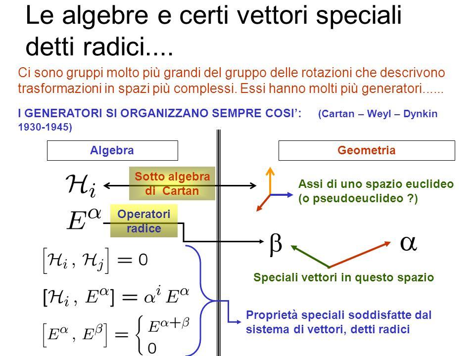 Le algebre e certi vettori speciali detti radici....