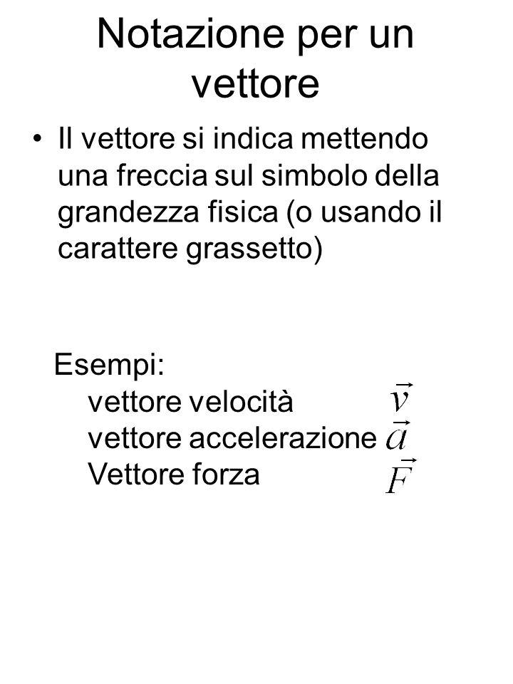 Notazione per un vettore