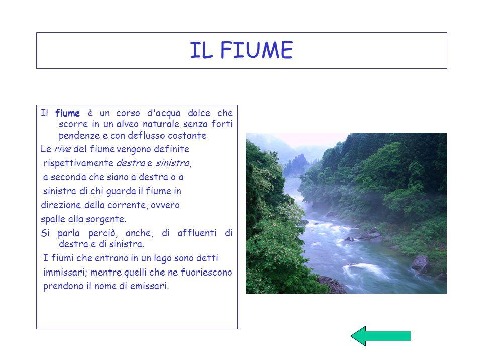 IL FIUME Il fiume è un corso d acqua dolce che scorre in un alveo naturale senza forti pendenze e con deflusso costante.