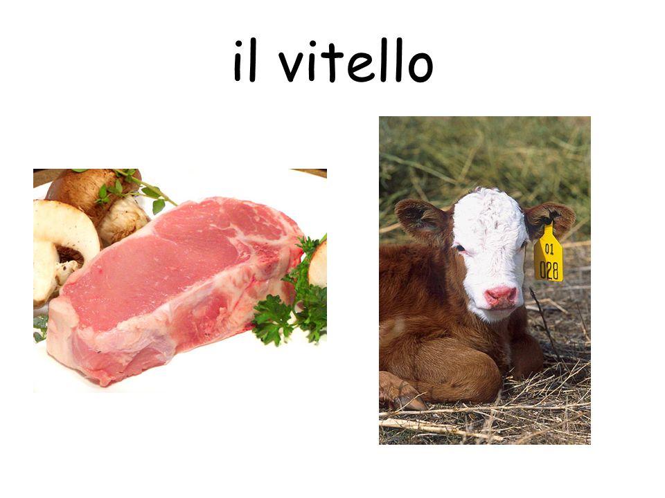il vitello