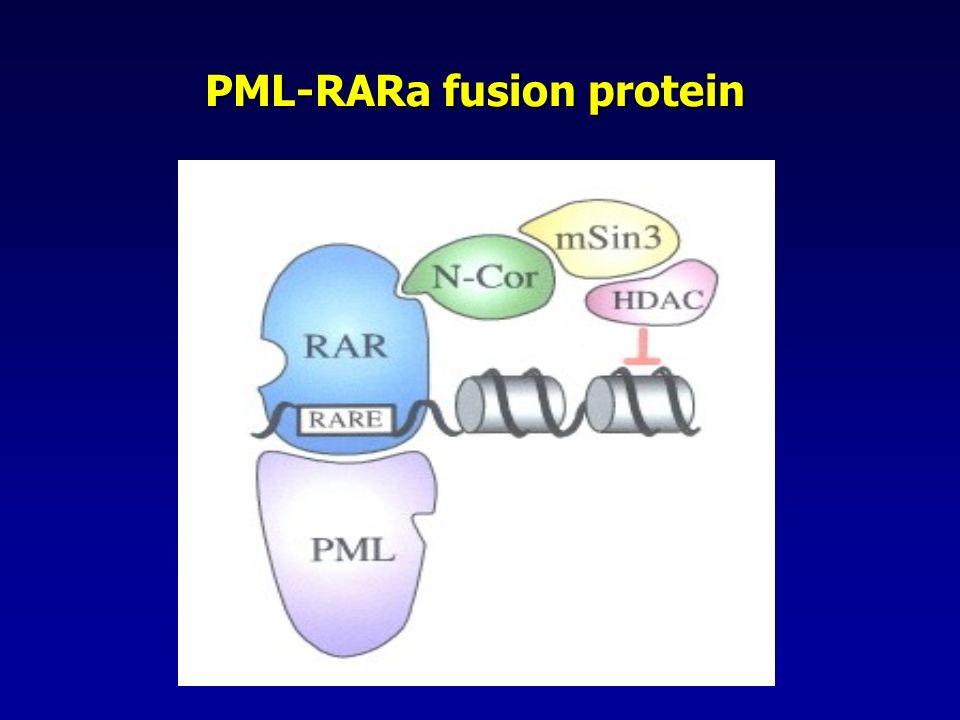 PML-RARa fusion protein