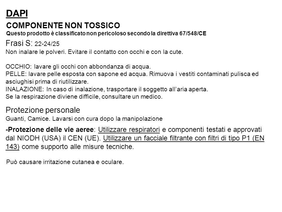 DAPI COMPONENTE NON TOSSICO Frasi S: 22-24/25 Protezione personale