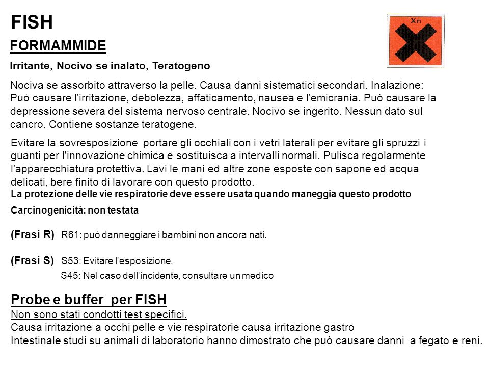 FISH FORMAMMIDE Probe e buffer per FISH