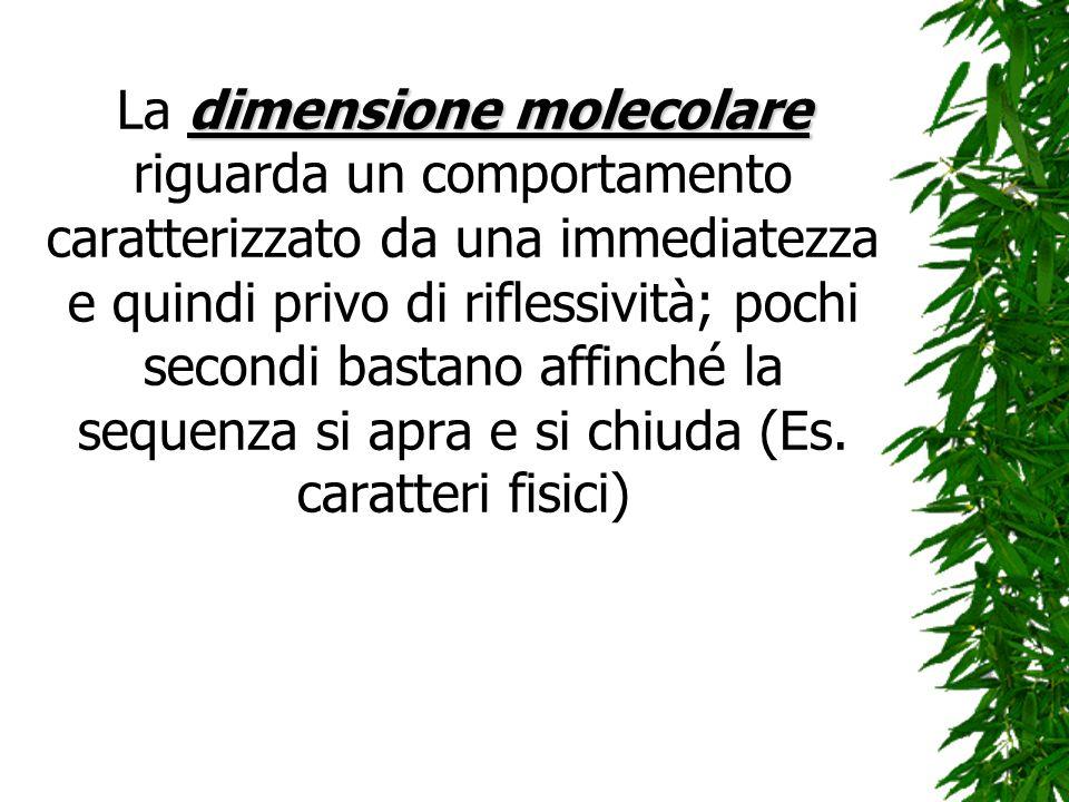 La dimensione molecolare riguarda un comportamento caratterizzato da una immediatezza e quindi privo di riflessività; pochi secondi bastano affinché la sequenza si apra e si chiuda (Es.