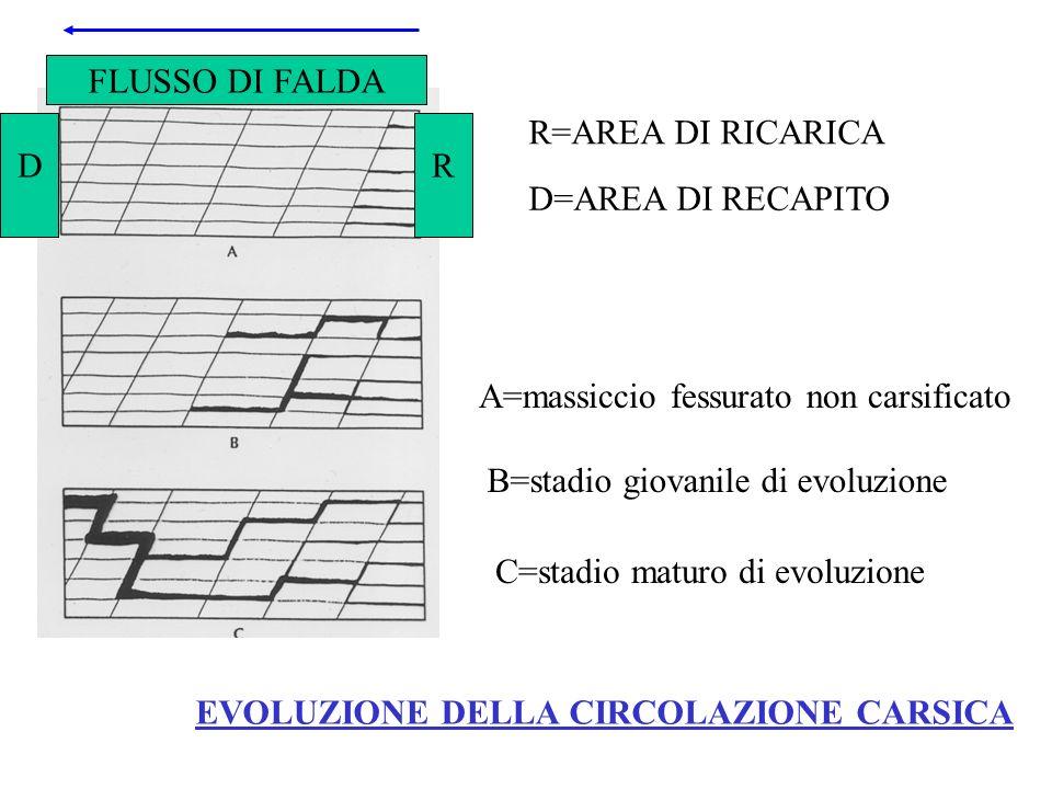 EVOLUZIONE DELLA CIRCOLAZIONE CARSICA