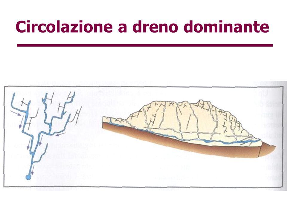 Circolazione a dreno dominante