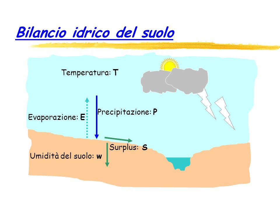 Bilancio idrico del suolo
