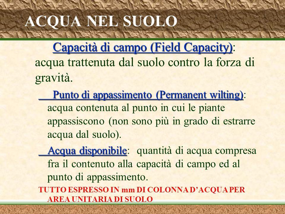 ACQUA NEL SUOLO Capacità di campo (Field Capacity): acqua trattenuta dal suolo contro la forza di gravità.