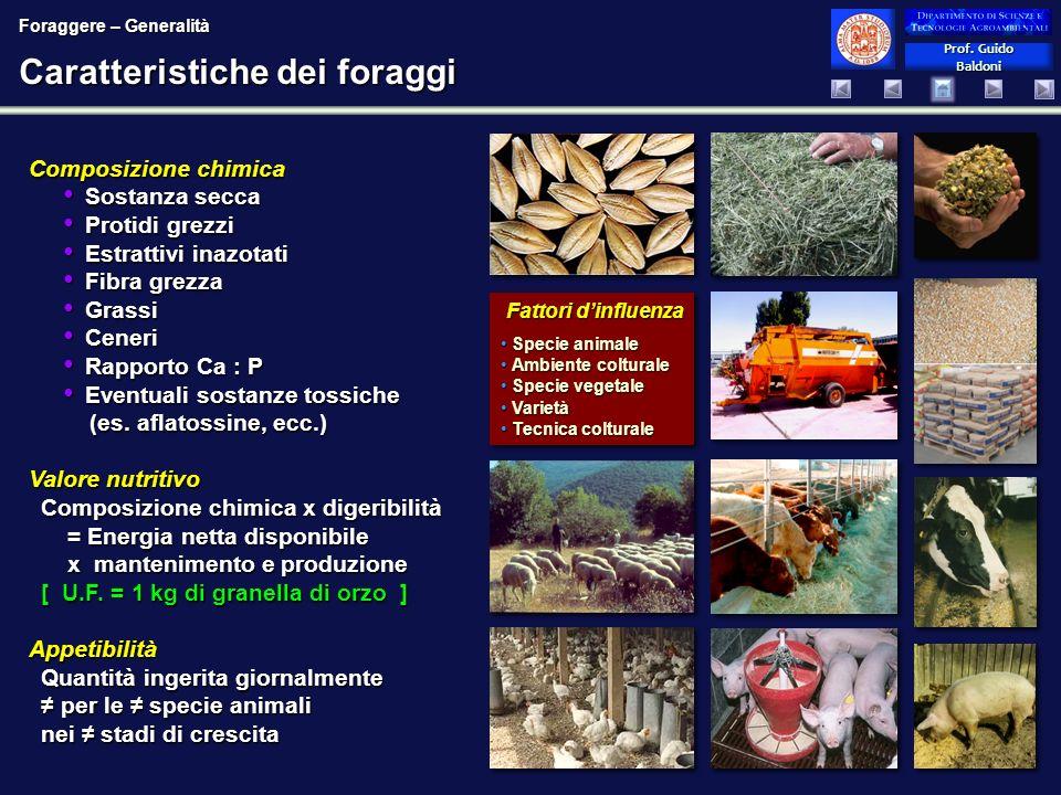 Caratteristiche dei foraggi