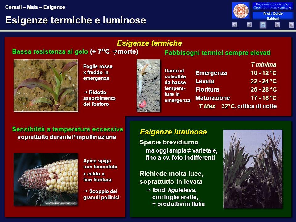 Esigenze termiche e luminose