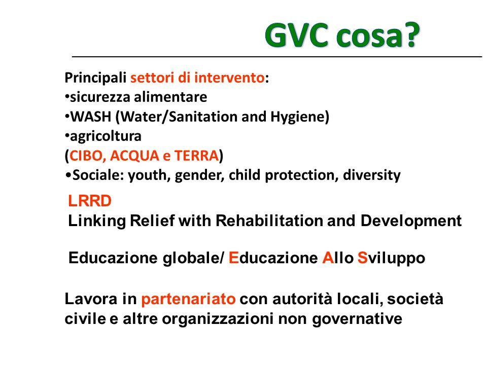 GVC cosa Principali settori di intervento: sicurezza alimentare