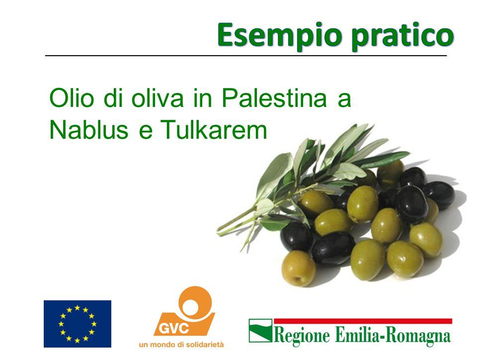 Esempio pratico Olio di oliva in Palestina a Nablus e Tulkarem