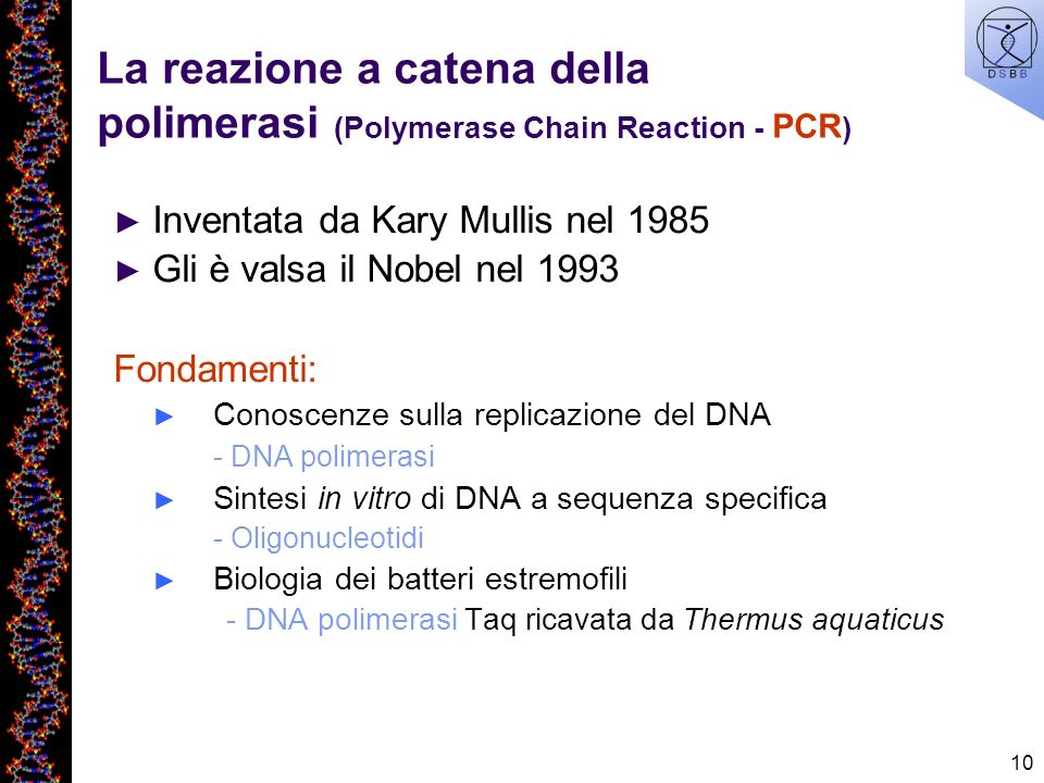 La reazione a catena della polimerasi (Polymerase Chain Reaction - PCR)