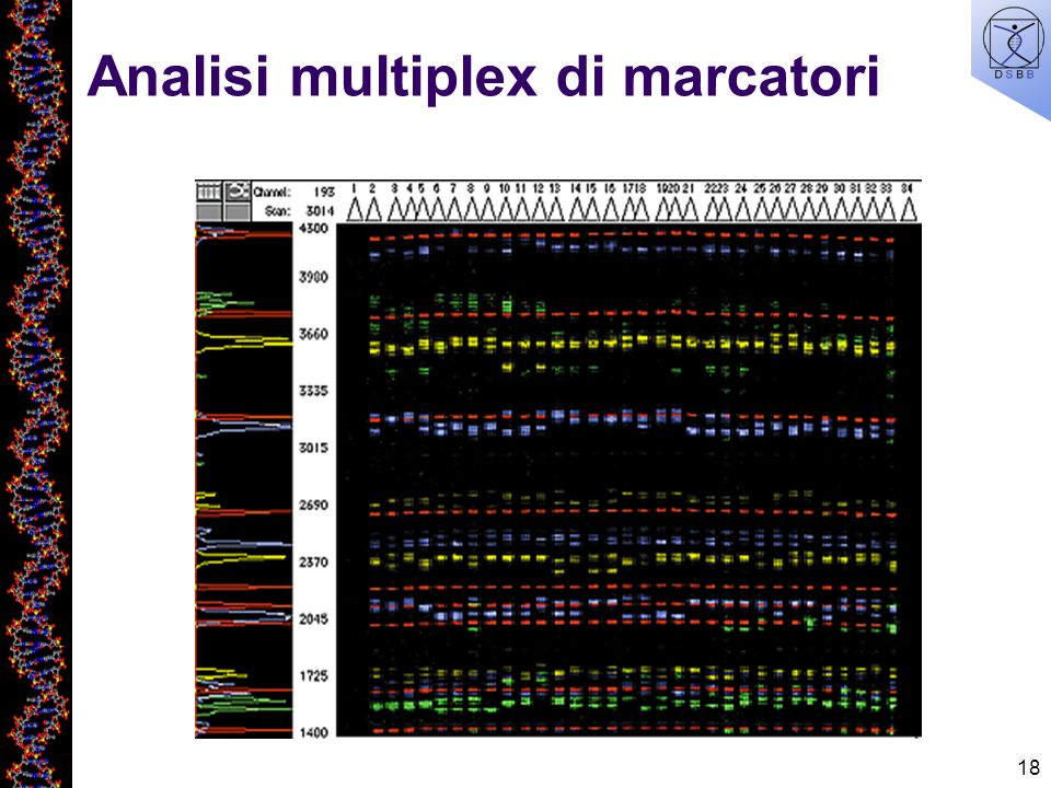 Analisi multiplex di marcatori