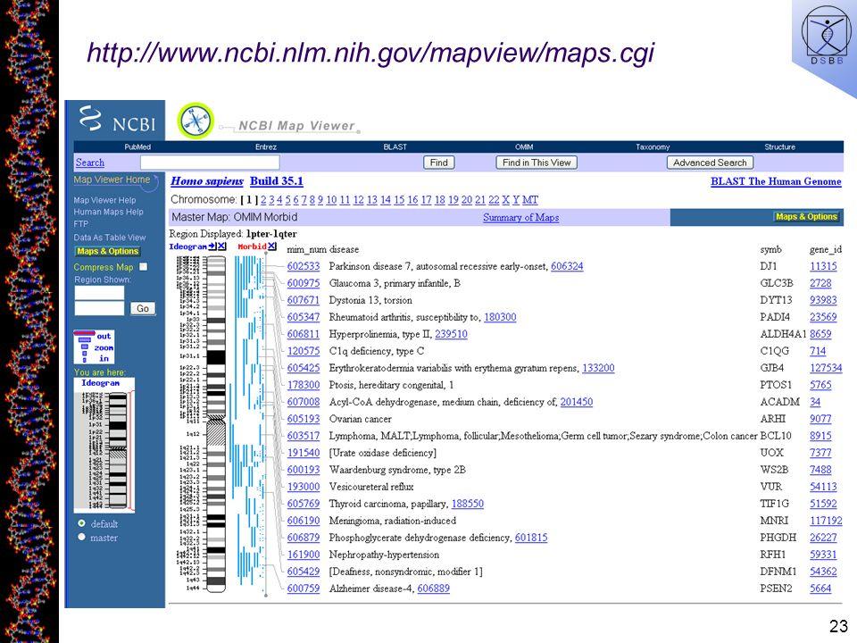 http://www.ncbi.nlm.nih.gov/mapview/maps.cgi