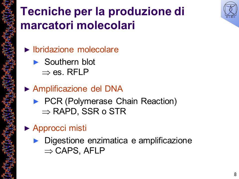 Tecniche per la produzione di marcatori molecolari