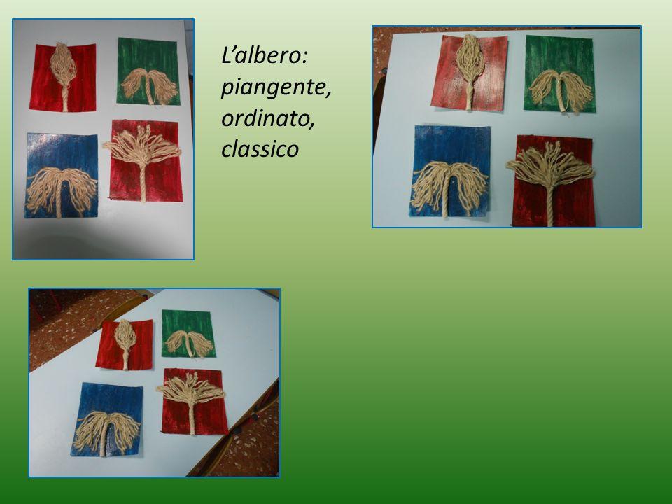 L'albero: piangente, ordinato, classico
