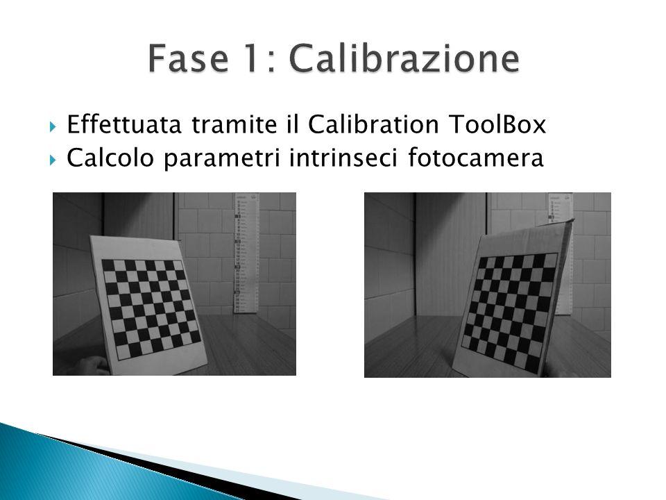 Fase 1: Calibrazione Effettuata tramite il Calibration ToolBox