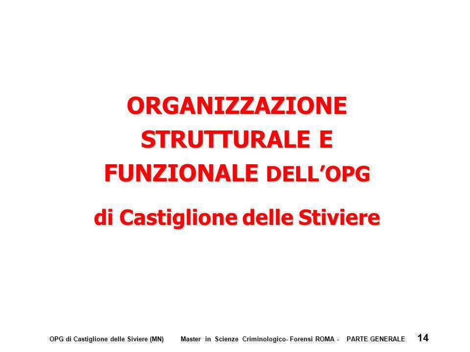 ORGANIZZAZIONE STRUTTURALE E FUNZIONALE DELL'OPG