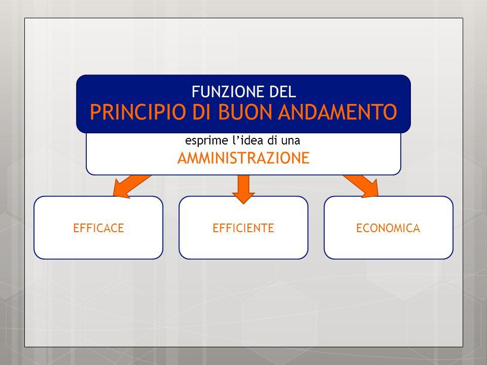 FUNZIONE DEL PRINCIPIO DI BUON ANDAMENTO