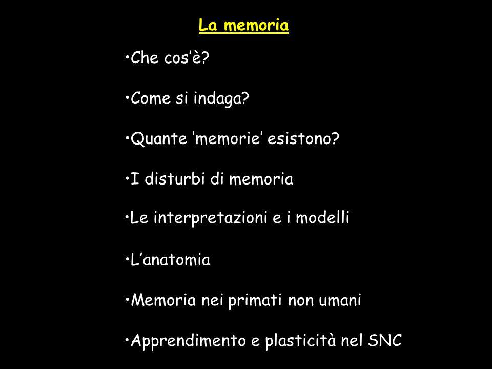 La memoria Che cos'è Come si indaga Quante 'memorie' esistono I disturbi di memoria. Le interpretazioni e i modelli.