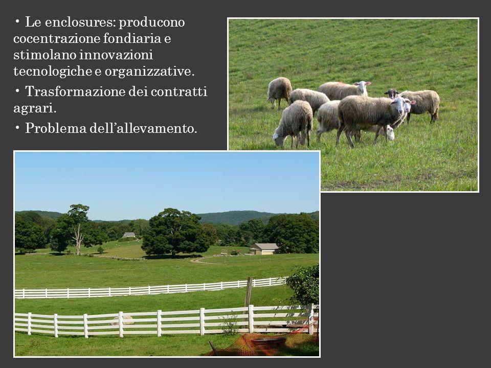 Le enclosures: producono cocentrazione fondiaria e stimolano innovazioni tecnologiche e organizzative.