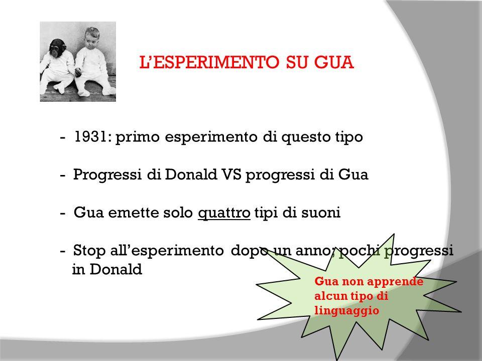 L'ESPERIMENTO SU GUA - 1931: primo esperimento di questo tipo