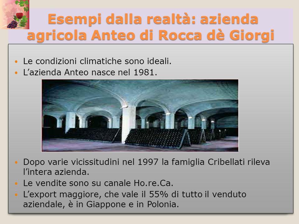 Esempi dalla realtà: azienda agricola Anteo di Rocca dè Giorgi