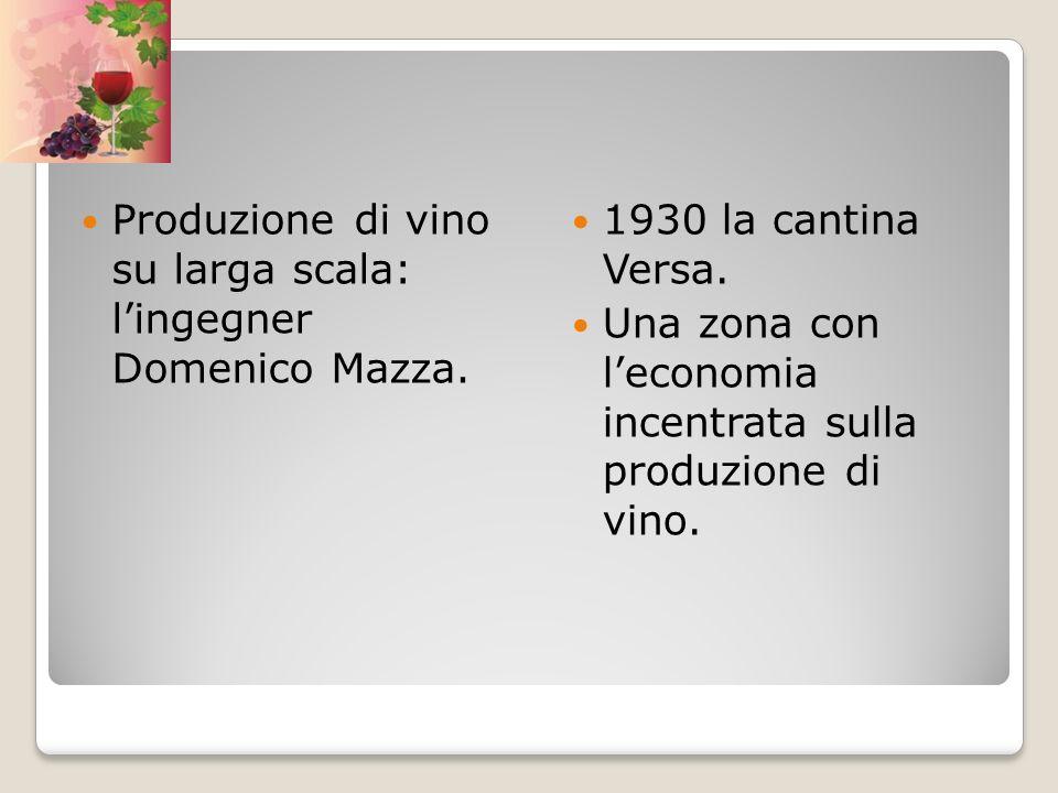 Produzione di vino su larga scala: l'ingegner Domenico Mazza.
