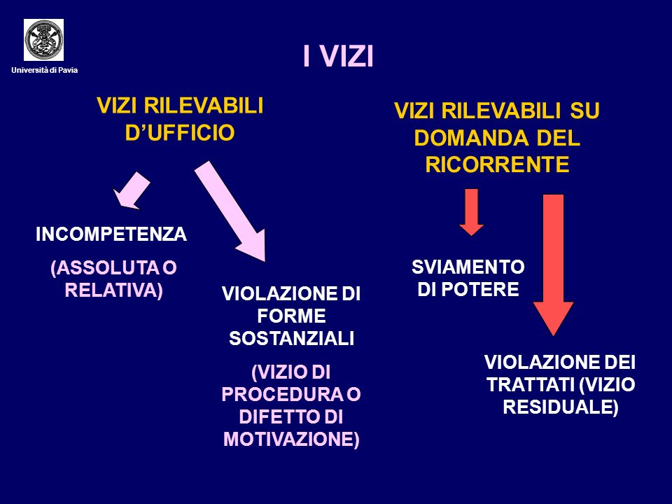 I VIZI VIZI RILEVABILI D'UFFICIO