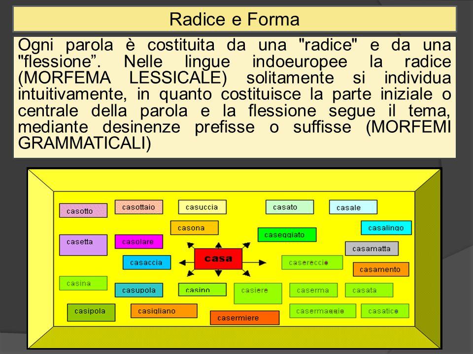 Radice e Forma