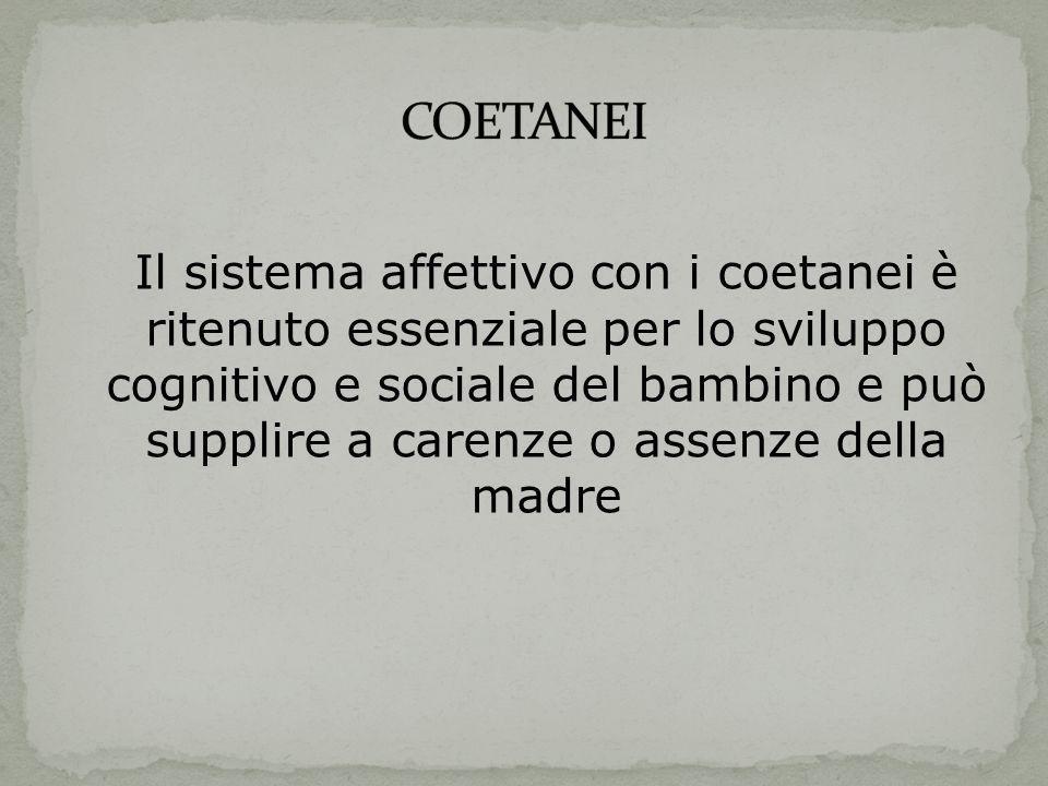 COETANEI