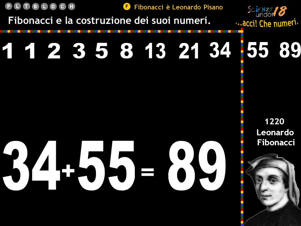 Fibonacci è Leonardo Pisano