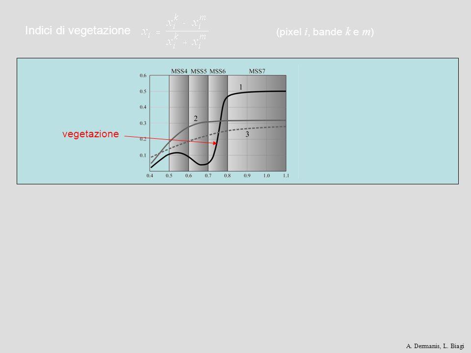 Indici di vegetazione (pixel i, bande k e m) vegetazione