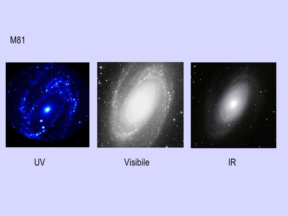 M81 Ancora M81, questa volta osservata in tre diverse regioni dello spettro elettromagnetico: ultravioletto, visibile e infrarosso.