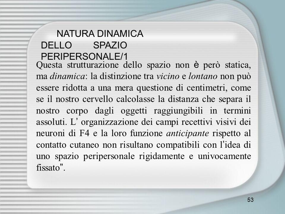 NATURA DINAMICA DELLO SPAZIO PERIPERSONALE/1
