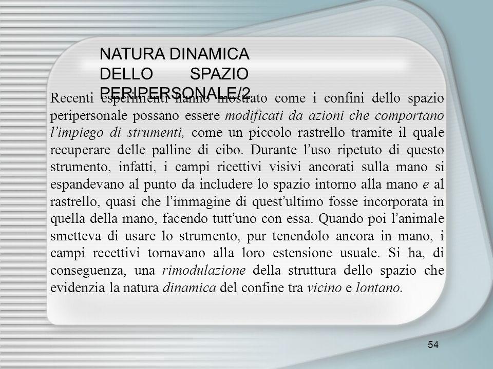 NATURA DINAMICA DELLO SPAZIO PERIPERSONALE/2