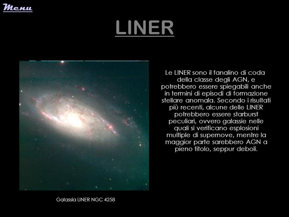Menu LINER.