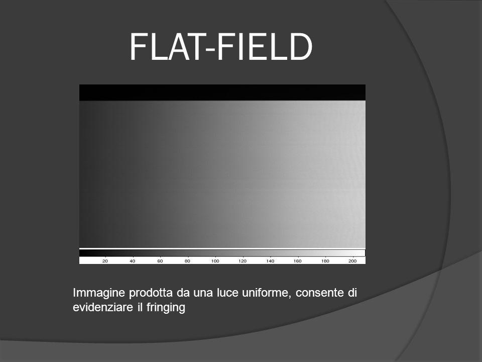 FLAT-FIELD Immagine prodotta da una luce uniforme, consente di evidenziare il fringing