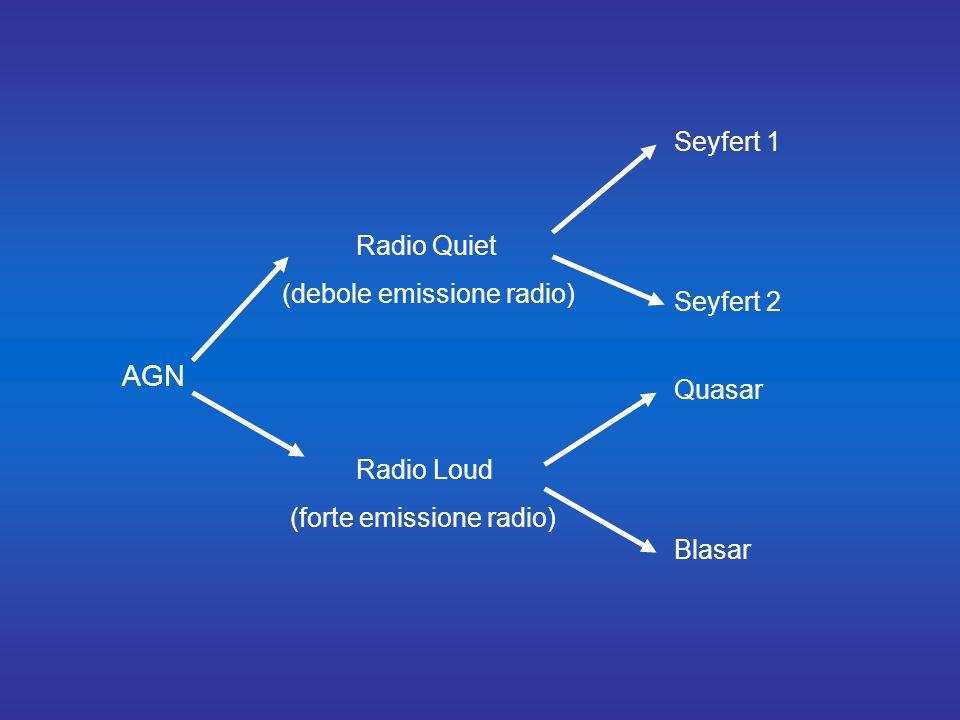 AGN Seyfert 1 Radio Quiet (debole emissione radio) Seyfert 2 Quasar