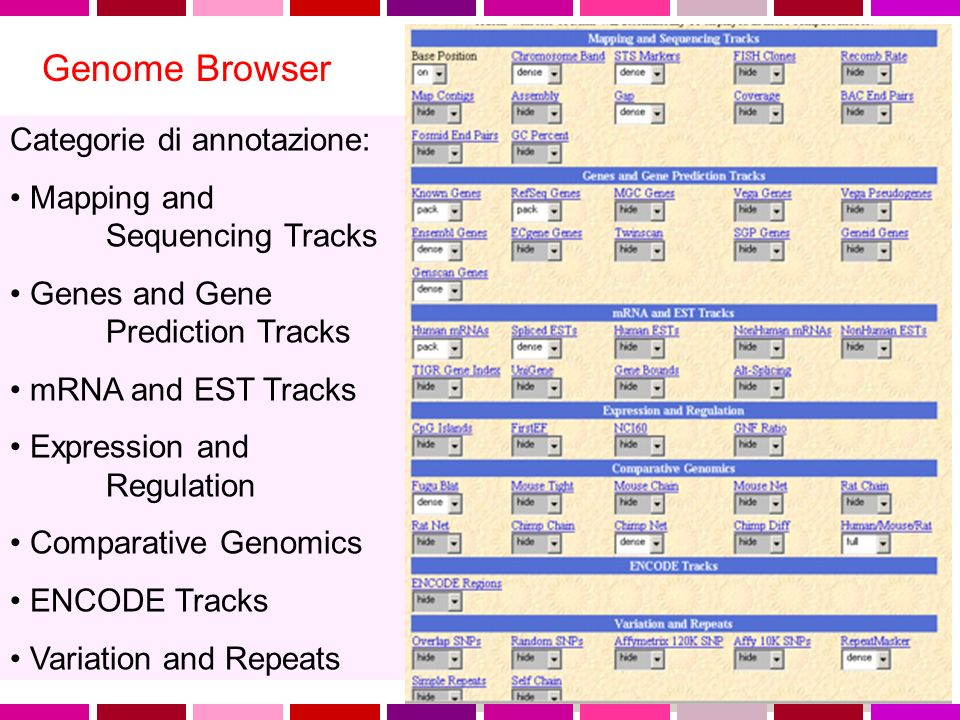 Genome Browser Categorie di annotazione: Mapping and Sequencing Tracks