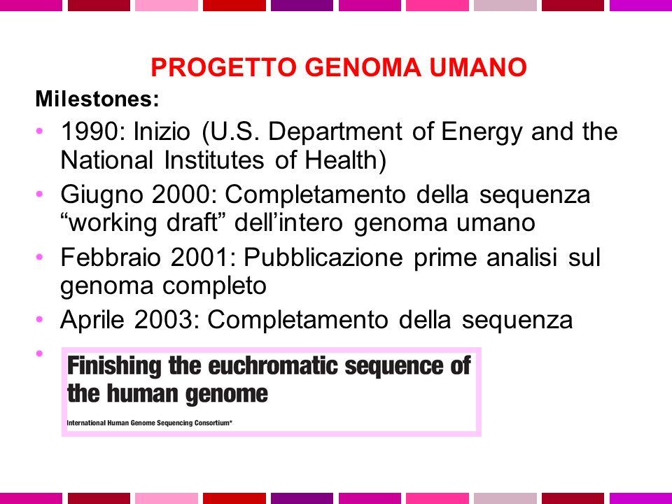 Febbraio 2001: Pubblicazione prime analisi sul genoma completo