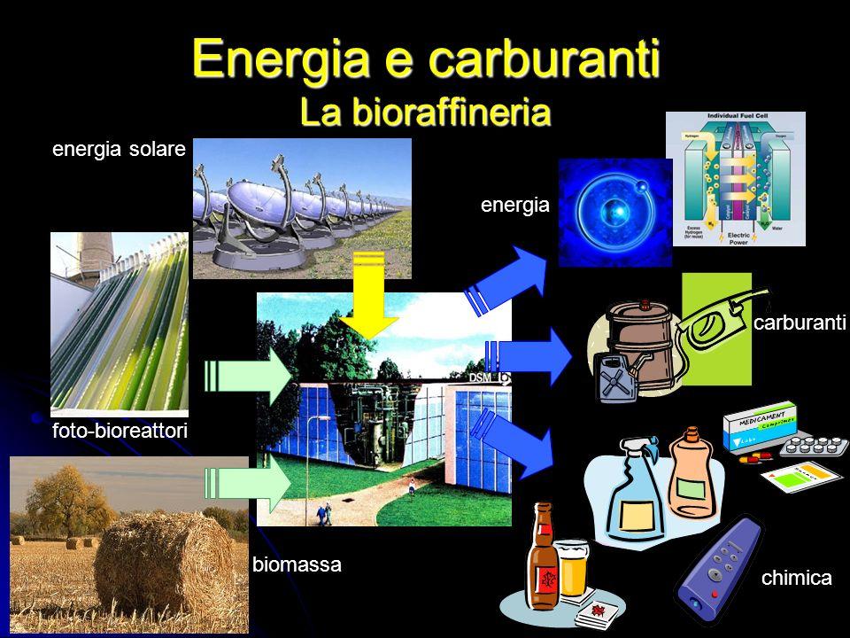 Energia e carburanti La bioraffineria