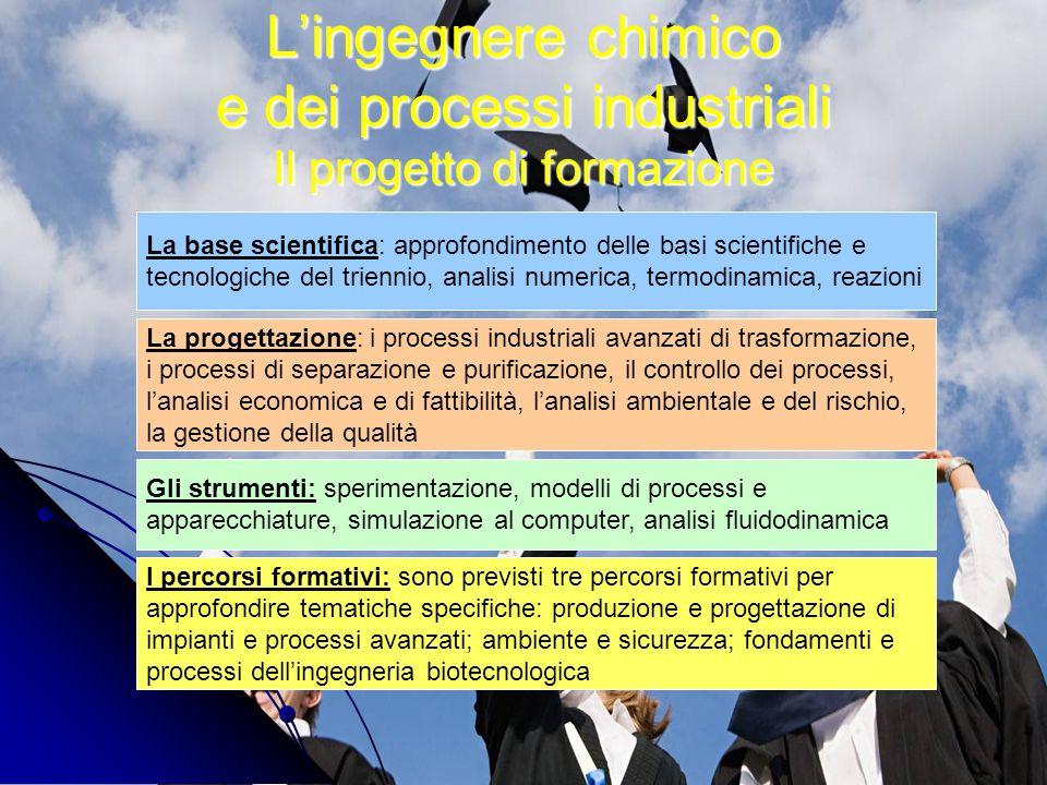 L'ingegnere chimico e dei processi industriali Il progetto di formazione