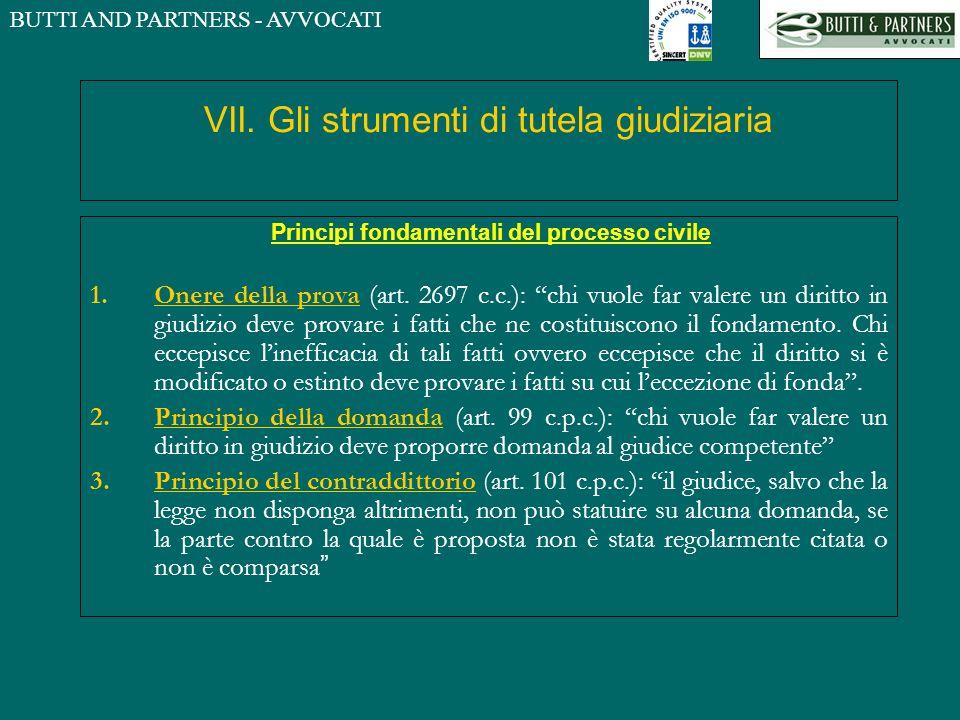 VII. Gli strumenti di tutela giudiziaria