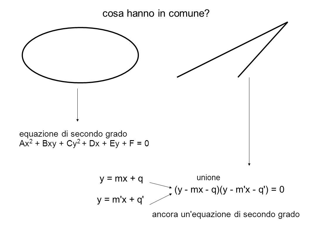 cosa hanno in comune y = mx + q y = m x + q