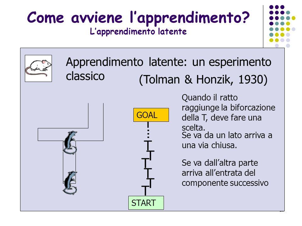 Come avviene l'apprendimento L'apprendimento latente