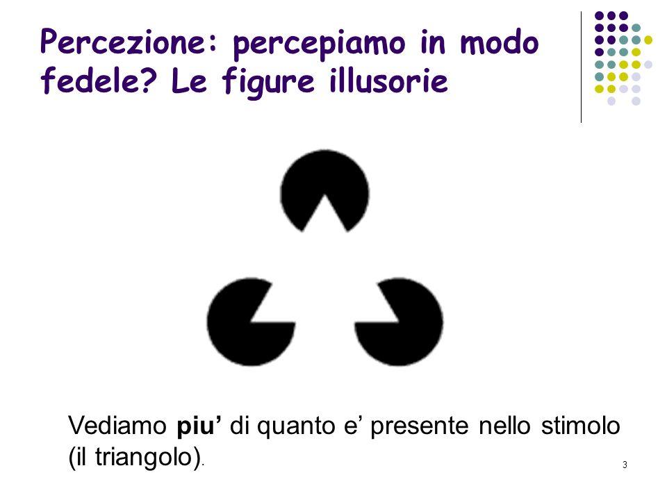 Percezione: percepiamo in modo fedele Le figure illusorie